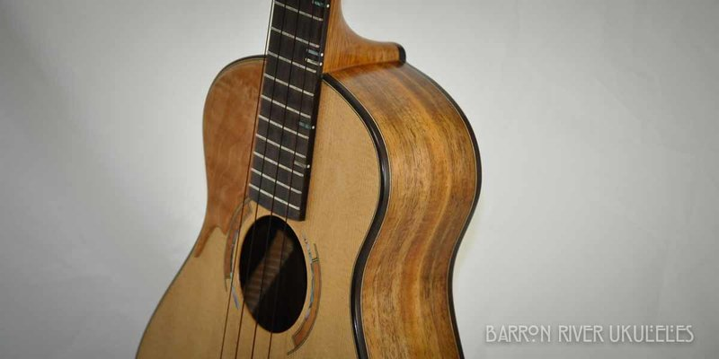 Blackwood and Sitka Tenor-2.jpg