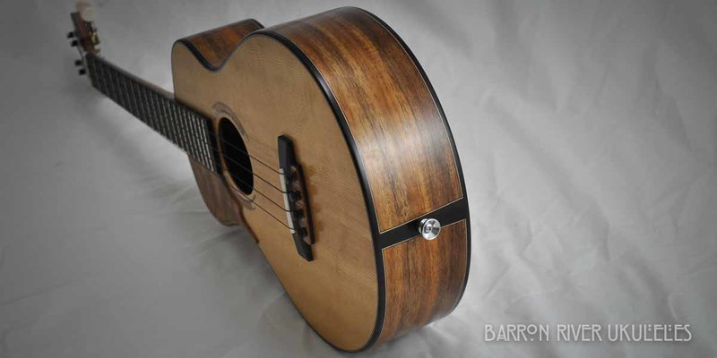 Blackwood and Sitka Tenor-8.jpg