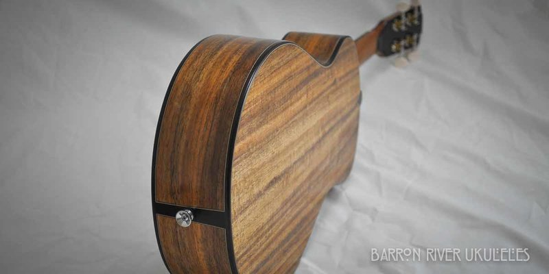 Blackwood and Sitka Tenor-9.jpg
