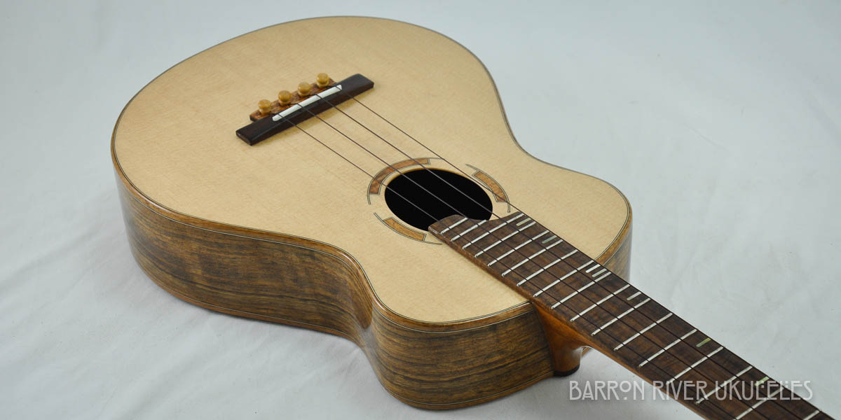 Ovangkol and Sitka Tenor-12.jpg