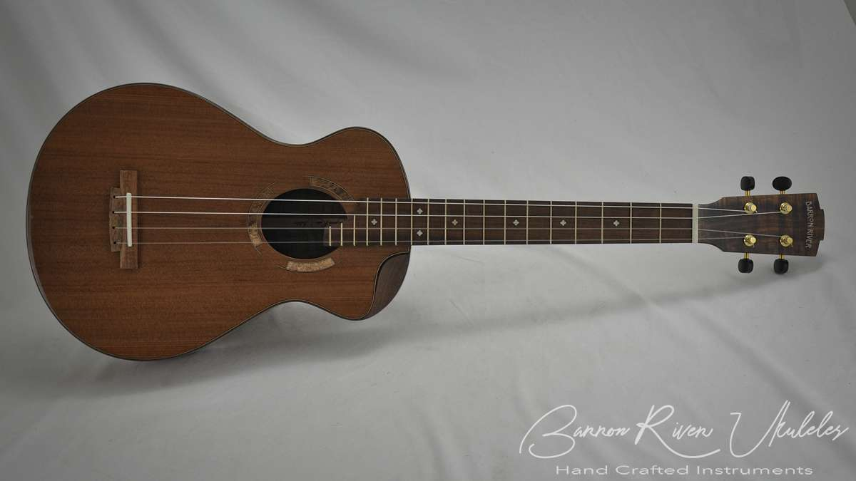 Blackwood and Sequoia Baritone with scoop cutaway4.jpg