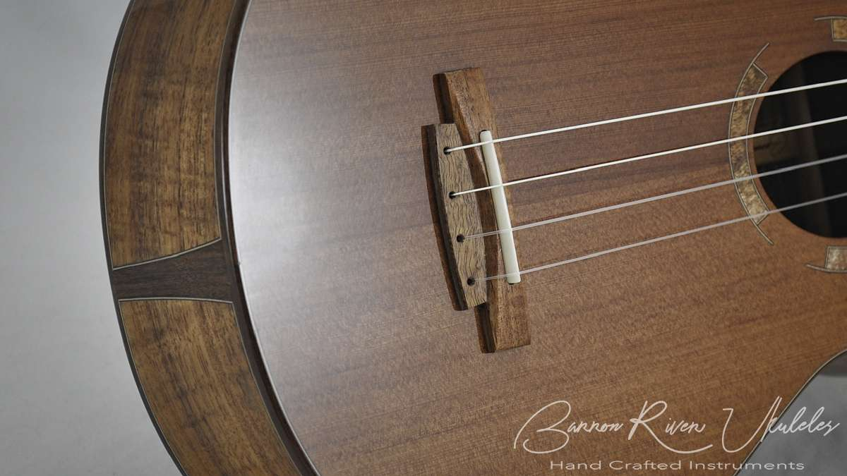Blackwood and Sequoia Baritone with scoop cutaway6.jpg