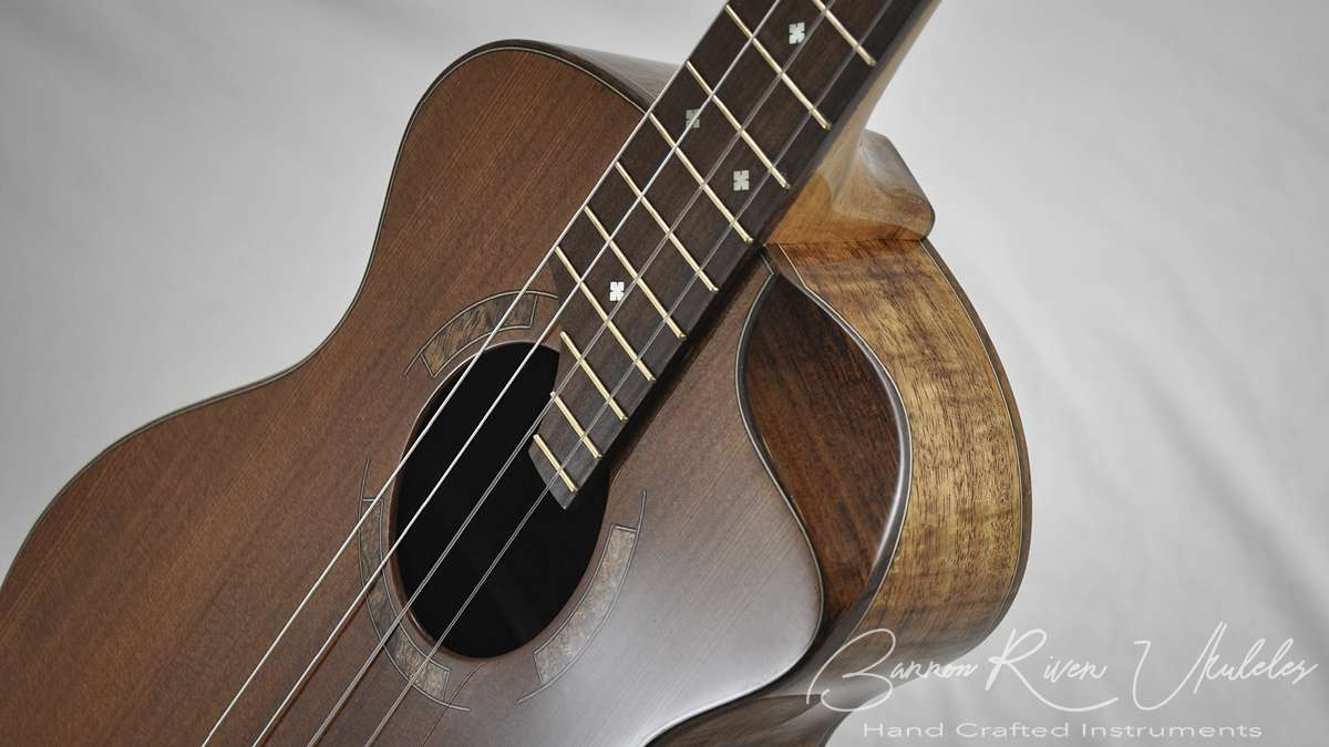 Blackwood and Sequoia Baritone with scoop cutaway13.jpg